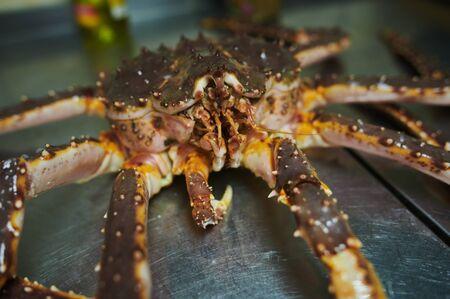Fresh raw edible brown sea crab also known as Cancer pagurus