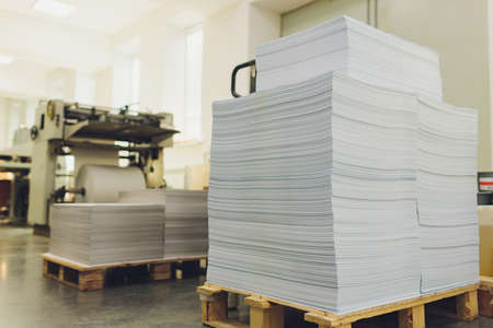 stacks of printed sheets of cardboard on wooden pallets closeup. printing industry.