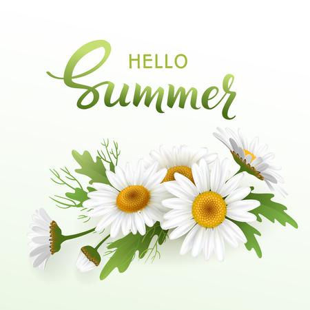 Hallo handgemachte Beschriftung des Sommers und realistisches Gänseblümchen des Blumenstraußes, Kamillenblumen auf weißem Hintergrund. Vektor-Illustration-Karte Standard-Bild - 74494814