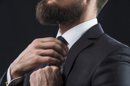 businessman suit: Bearded businessman in suit tying up his tie.