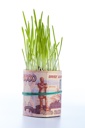 Five thousand ruble bill and green grass.