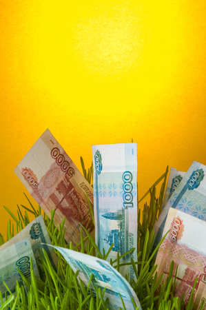 Investment growth: russian ruble bills in green grass. Stock Photo