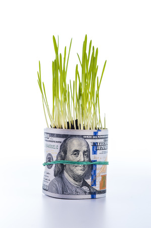upgrowth: Money growth: dollar bill and green grass.