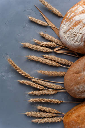 Freshly baked different breads on grey background.