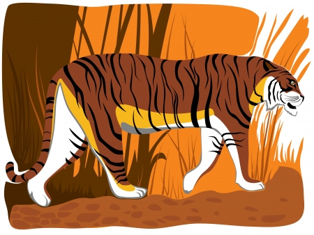 illustration of cartoon tiger in orange brown tone in jungle. Vector