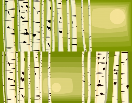 Vector illustrations of horizontal background with many birches trunks in sun light in green tone with space for text. Stock Vector - 16006835