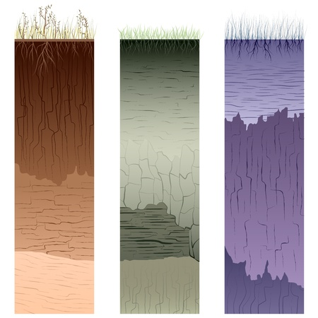 stratigraphy: Three columns with cut of soil (profile) with a grass, roots,layers of the earth, clay and cracks (Vector illustration).