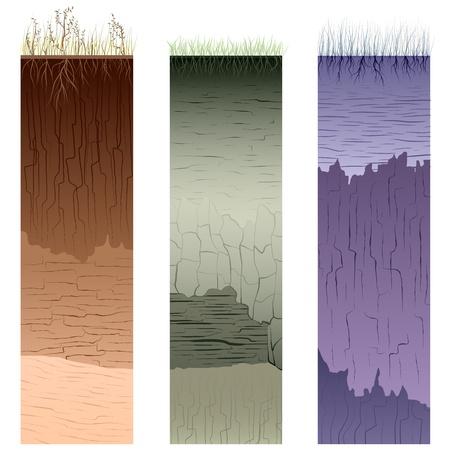 Sandy soil: Tres columnas con el corte de suelo (perfil) con una hierba, ra�ces, las capas de la tierra, arcilla y grietas (ilustraci�n vectorial).