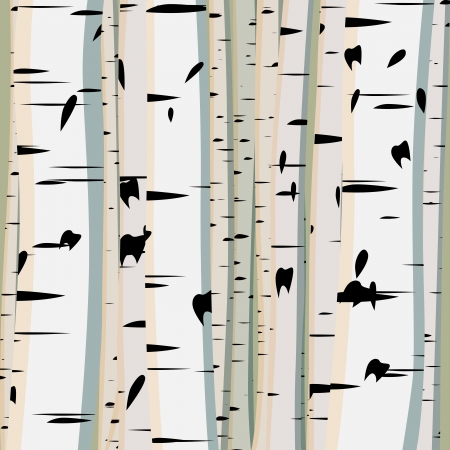 birch leaf: Vector illustration of square background with a lot of trunks of birches.