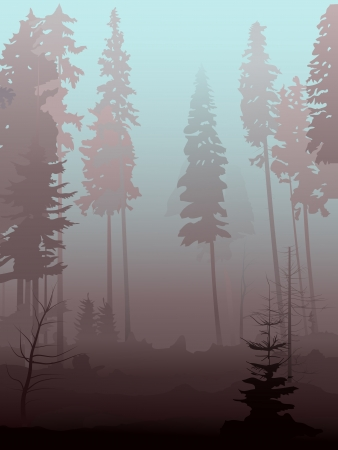 Vector illustration background of mist in coniferous forest in morning  Ilustrace