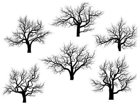 Set of vector silhouettes of oak trees without leaves during the winter or spring period  Ilustrace