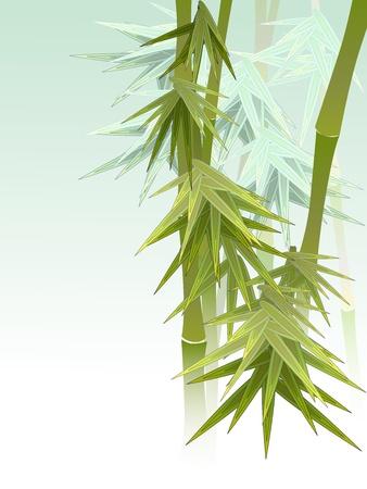 Green bamboo in a fog. Stock Vector - 16272073