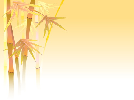 Asian bamboo in a fog in light of sun. Vector