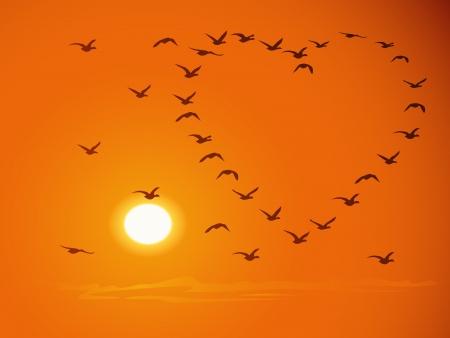 Sylwetki ptaków latających stad (w kształcie serca), przed zachodem słońca, a niebo pomarańczowy.
