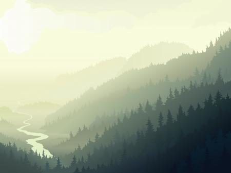 arbol de pino: Ilustración vectorial de madera de coníferas salvaje con el río en una mañana de niebla.