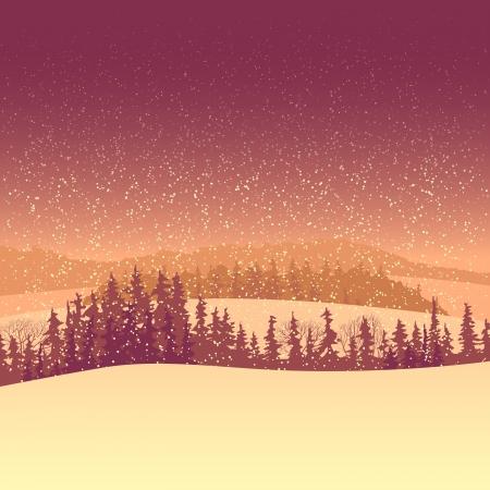 coniferous forest: ilustraci�n del valle nevado bosque de con�feras con nevadas por la ma�ana.