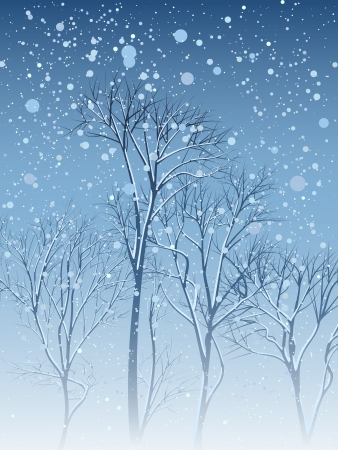coldness: Vector illustration of grove of trees with snow on the branches in the snowfall.