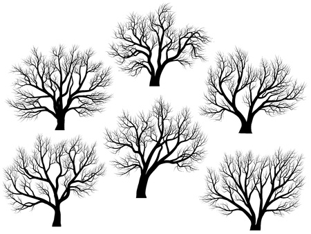 winter garden: Set of vector silhouettes of deciduous large trees without leaves during the winter or spring period.