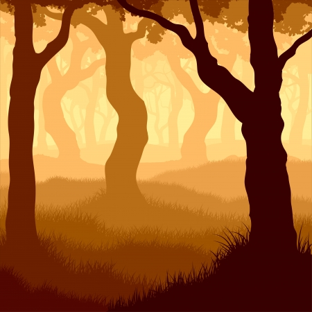 coma: Vector illustration of many tree trunks within forest with grass and sunshine