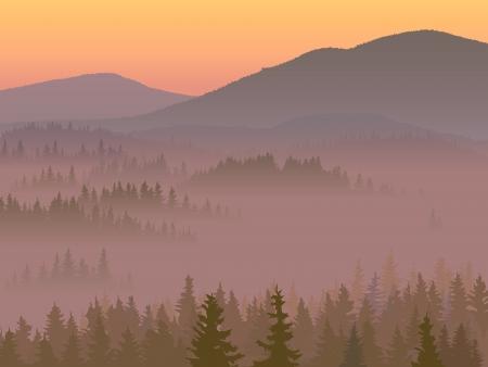 misty forest: Valle en el centro de la madera de con�feras en una niebla de la ma�ana Vectores