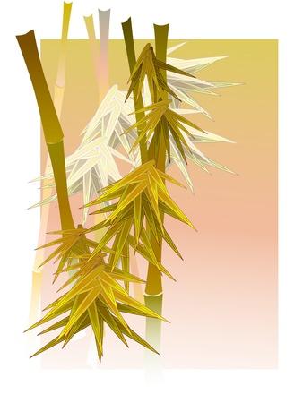Asian bamboo in a fog in light of sun in white frame. Stock Vector - 17330369