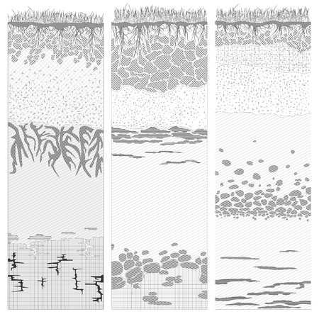 soil texture: Three columns with cut of soil (profile) with a grass, roots,layers of the earth, clay and stones in black and white color (Vector illustration).
