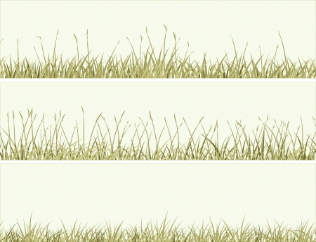 thicket: Vector of horizontal banners abstract meadow grass in pale green.