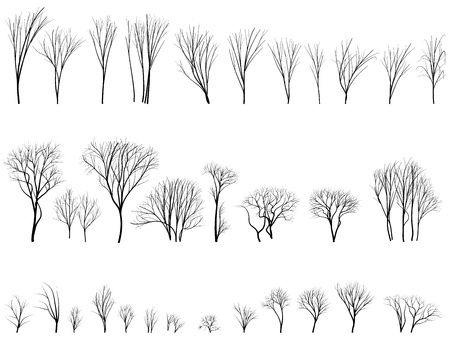 Set of vector silhouettes of trees and bushes without leaves during the winter or spring period.