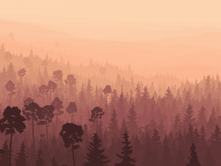 foggy hill: Vector panorama of wild coniferous forest in morning fog with pines.