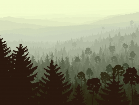 panorama of wild coniferous forest in morning fog with firs in foreground. Illustration
