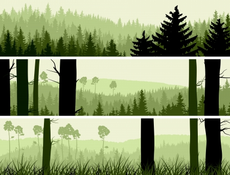 Horizontal abstract banners of hills of coniferous wood in green tone. Vector