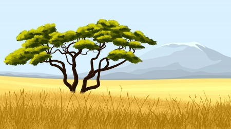 illustration:African landscape, yellow grass and acacia one against mountain on hot day.