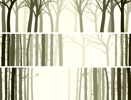 Vector abstract horizontal banner with many tree trunks (coniferous and deciduous forest). Vector