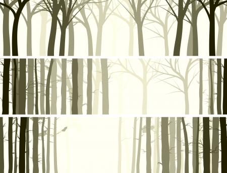 banner orizzontali: Vector astratto banner orizzontale con molti tronchi d'albero (conifere e boschi di latifoglie).