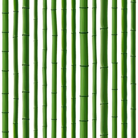 작은 숲: 흰색에 녹색 대나무 숲의 원활한 배경입니다.