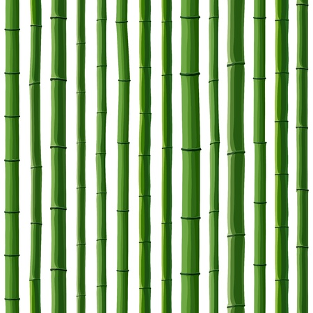 Seamless background of green bamboo forest on white. Vector