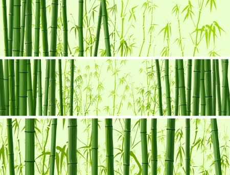 Astratto banner orizzontale con molti tronchi d'albero di bambù in colore verde