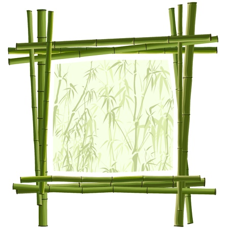 Vector square frame for photography from green bamboo. Vector
