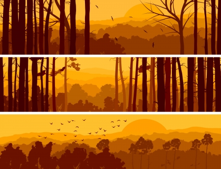 Horizontal abstract banners of hills of deciduous wood with birds in orange tone (sunset).