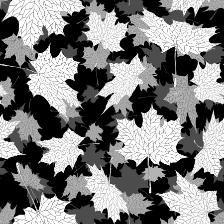 black and white leaf: seamless black and white background: a lot of falling autumn maple leaves in air.