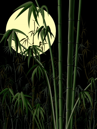 bamboo forest at night with the moon. Vector