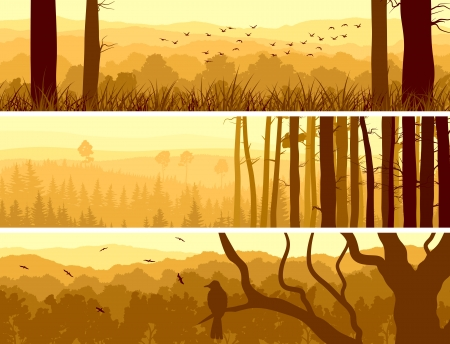 Horizontal abstract banners of hills of deciduous wood with birds in yellow tone (sunset). Ilustrace