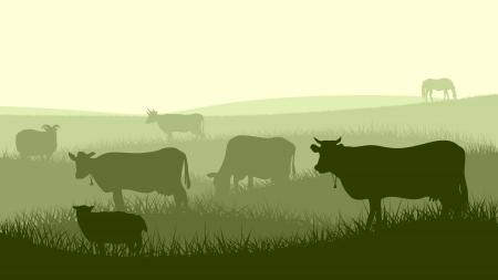 초원에 방목 동물 (소, 말, 양)의 가로 그림 실루엣. 일러스트