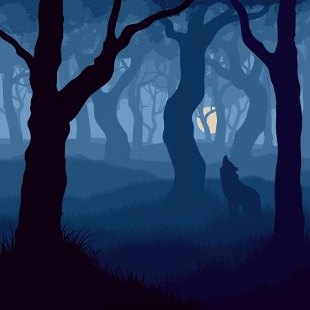 lobo: ilustración de lobo aullando a la luna en el bosque de noche.