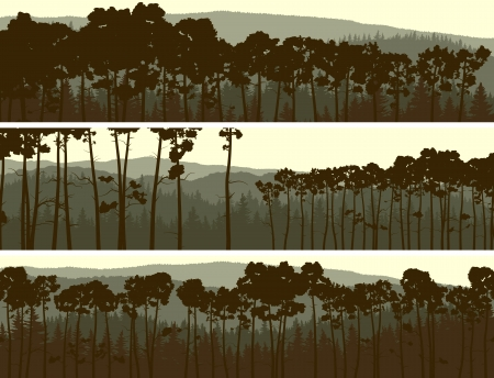misty forest: Horizontal abstract banners of hills coniferous pinewood in yellow green tone. Illustration