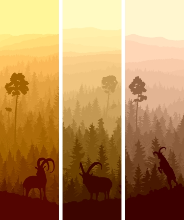 Vertical abstract banners of hills of coniferous wood with mountain goats in yellow and orange tone. Vector
