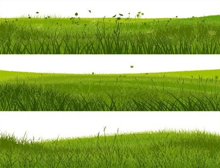 Horizontale banners van abstracte weidegras in een groene tint.