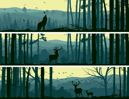 Horizontal abstract banners of wild animals (deer, wolf) in hills of forest with trunks of trees in green tone.