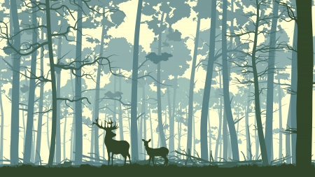 forest background: Vector abstract illustration of wild deer in forest with trunks of trees. Illustration