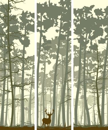 coniferous forest: Resumen banners verticales de ciervos salvajes en el bosque con troncos de pinos.